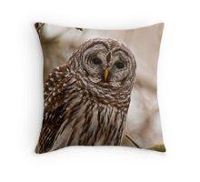 Barred Owl - Presqu'ile Provincial Park  Throw Pillow