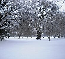 Snowy park scene by Stephanie Owen