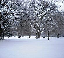 Snowy park scene by Stephanie Owen