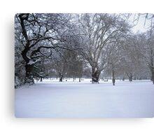 Snowy park scene Metal Print