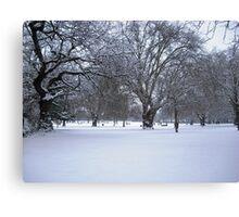 Snowy park scene Canvas Print