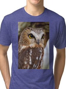 Saw Whet Owl - Amherst Island, Ontario Tri-blend T-Shirt