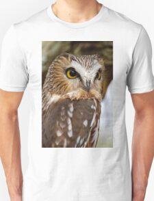 Saw Whet Owl - Amherst Island, Ontario T-Shirt