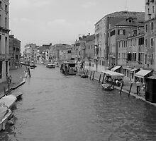 Venice  by Nic Lahey