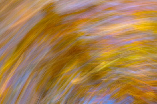 Abstract Autumn by Richard Keech
