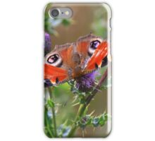 Peacock Butterfly ( Inachis IIo) on wild thistle by the River Tees, Northern England.  iPhone Case/Skin