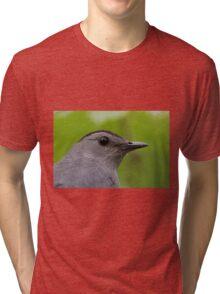 Gray Catbird Tri-blend T-Shirt