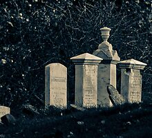 Fort William Henry Cemetery, Bristol ME by Anthony  Romano