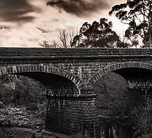 Bridge by Lois Romer