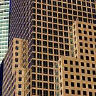 Windows by Paul Finnegan