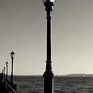 Lamp Posts by Paul Finnegan