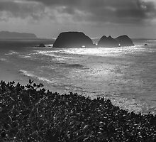 Shag Rock and Three Arches Rock by Zigzagmtart