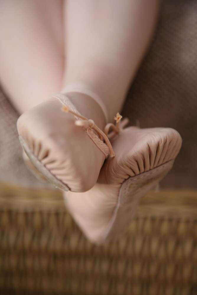 The Ballet Shoes by Jeff  Wilson