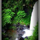 Zillie Falls - FNQ - Australia by Vanessa Barklay