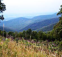 Blue Ridge Mountains by dementedart
