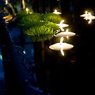 Candles in the pond by DiamondCactus