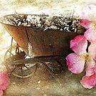 Backyard Planter by CarolM