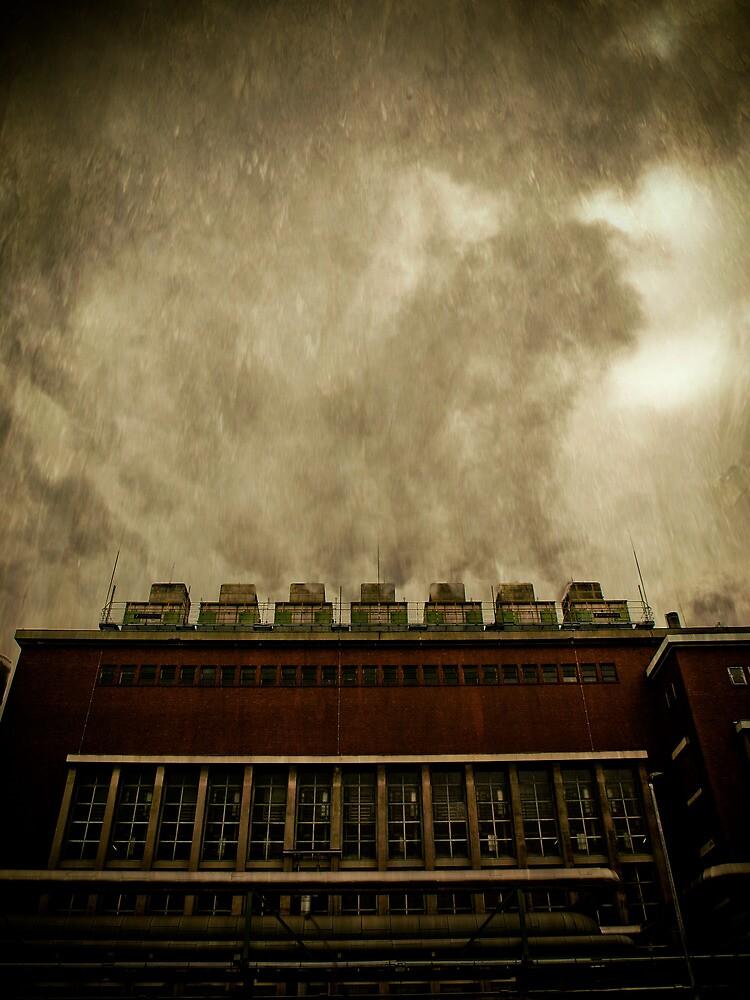 Acid Rain by Bernhard Reddig
