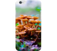 The Mushroom Forest iPhone Case/Skin