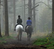 Riding out in mistery land by jchanders