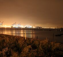 Sentinels in The Night by pmarella