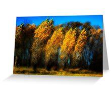 Windy Poplars on Lake Ontario Greeting Card