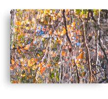 Impressionist Autumn mirror Canvas Print
