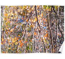 Impressionist Autumn mirror Poster