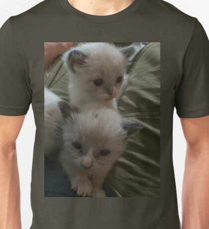 Two Adorable Kittens Unisex T-Shirt