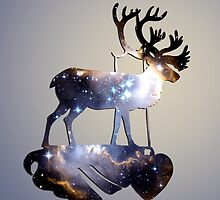 Reindeer by infloence