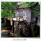 Stone Moutain Grist Mill by lynell