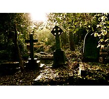 Tombstones in Highgate Cemetery (West) Photographic Print