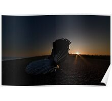Scallop Sunset Poster