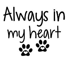 Always In My Heart, Pet Love Photographic Print