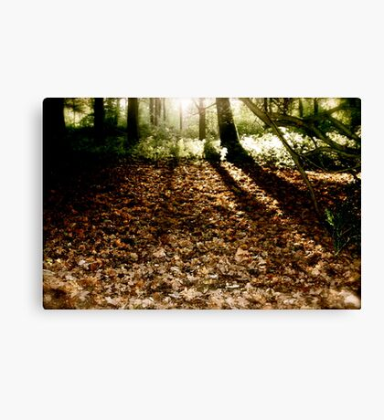 Walkers with the Dawn Canvas Print