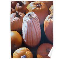 The Pumpkin Congregation Poster