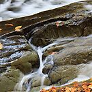 Fall Flow by martinilogic