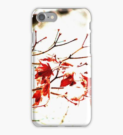 Snowy Maple Abstract iPhone Case/Skin