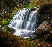 Hidden Falls by Stephen Rowsell