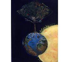 Genesis tree Photographic Print