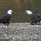 Kodiak Eagles by Ken Scarboro