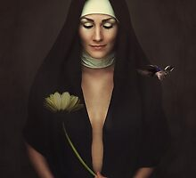 Hush by Karen  Helgesen