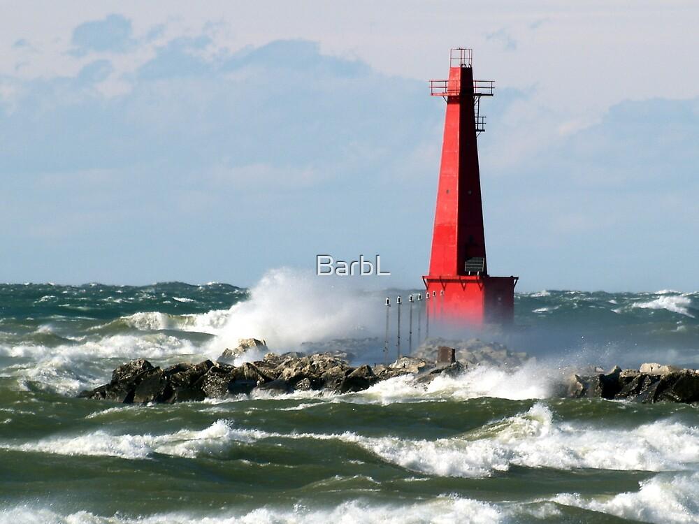 The Churning Lake Michigan by BarbL