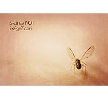 ~ Small, but NOT insignificant ~ Photographic Print
