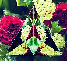 Roses by irisknight