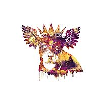 Flying Dog Photographic Print