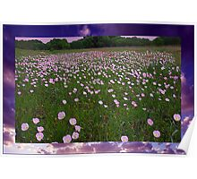 Buttercups in the Clouds Poster