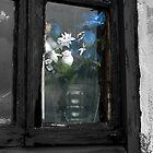 flowers in a window by Mike van der Hoorn