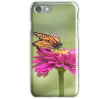 Monarch On Zinnia 2-2015 iPhone Case/Skin