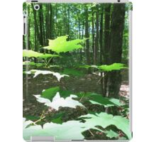 Maple Leaves iPad Case/Skin
